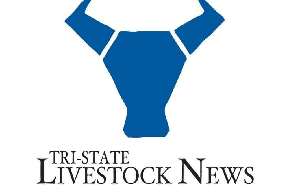 Wyoming Legislators Introduce Bill to Preserve Rancher Choice When Identifying Cattle